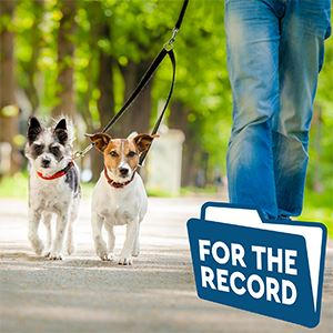 For_The_Record_Dog_Laws-nf copy